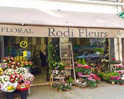 Rodi Fleurs - Nice